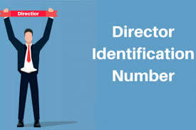 DIN-director-identification-number